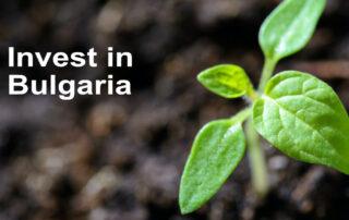 Invest in Bulgaria